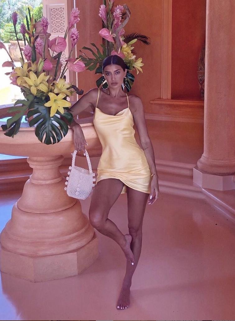 nicole-williams-yellowslipdress-2019-stylerave