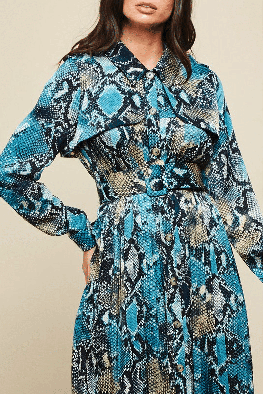 Sophia Blue Diamond Animal Print Dress