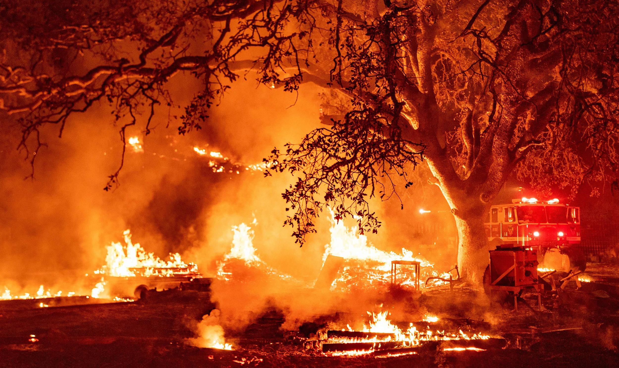 lupita-nyongo-emmy-nomination-wildfire-apple-fire-california-dortmund-sancho-latest-news-global-world-stories-monday-august-2020-style-rave